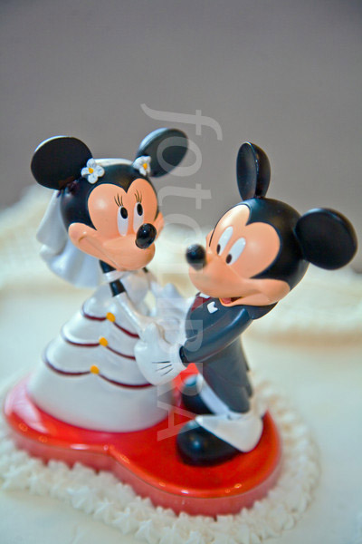 Here is a photograph of a wedding cake topper. The image rights are avaibale on fotoLibra.