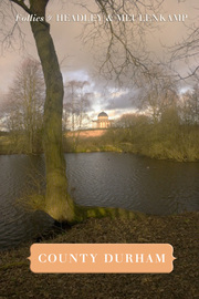 Cover of Follies of County Durham by Gwyn Headley & Wim Meulenkamp