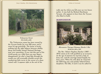 Preview Follies of Cornwall by Gwyn Headley & Wim Meulenkamp