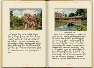 Preview Follies of Bedfordshire & Cambridgeshire by Gwyn Headley & Wim Meulenkamp