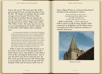 Preview Follies of East Sussex by Gwyn Headley & Wim Meulenkamp
