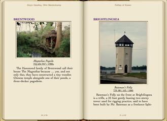 Preview Follies of Essex by Gwyn Headley & Wim Meulenkamp