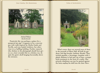 Preview Follies of Herefordshire by Gwyn Headley & Wim Meulenkamp