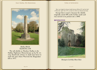 Preview Follies of Hertfordshire by Gwyn Headley & Wim Meulenkamp