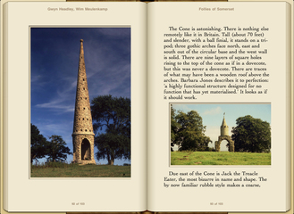 Preview Follies of Somerset by Gwyn Headley & Wim Meulenkamp