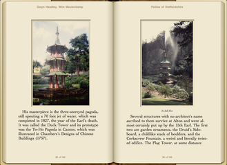 Preview Follies of Staffordshire by Gwyn Headley & Wim Meulenkamp