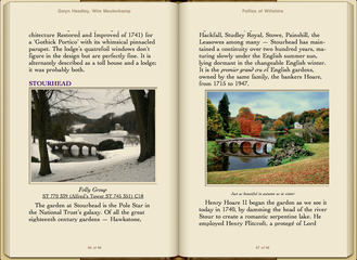 Preview Follies of Wiltshire by Gwyn Headley & Wim Meulenkamp